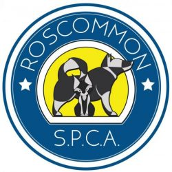 RoscommonSpca.ie
